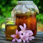 Чайный гриб для похудения и его свойства