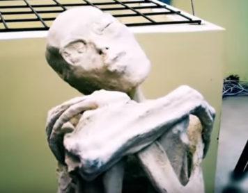 Впервые был найден настоящий пришелец в Перу!