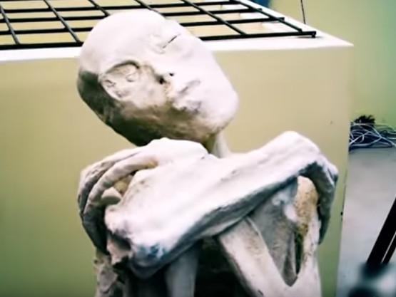 мумия пришельца в перу
