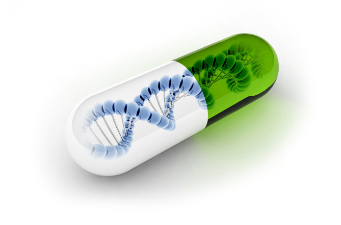 Биологическая флешка - новый формат хранения данных