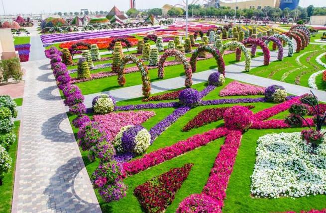 парк с цветами в Дубае